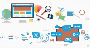 Website Development Services offered by iTransparity